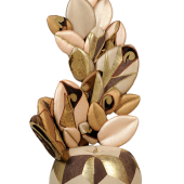 Dieffenbachia tolemaica